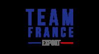 teamfranceexport